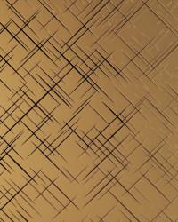 sms-003 bronze